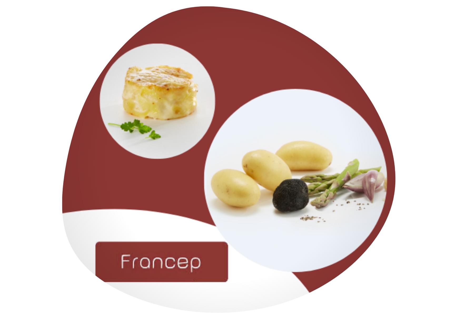 Francep-page-corpo
