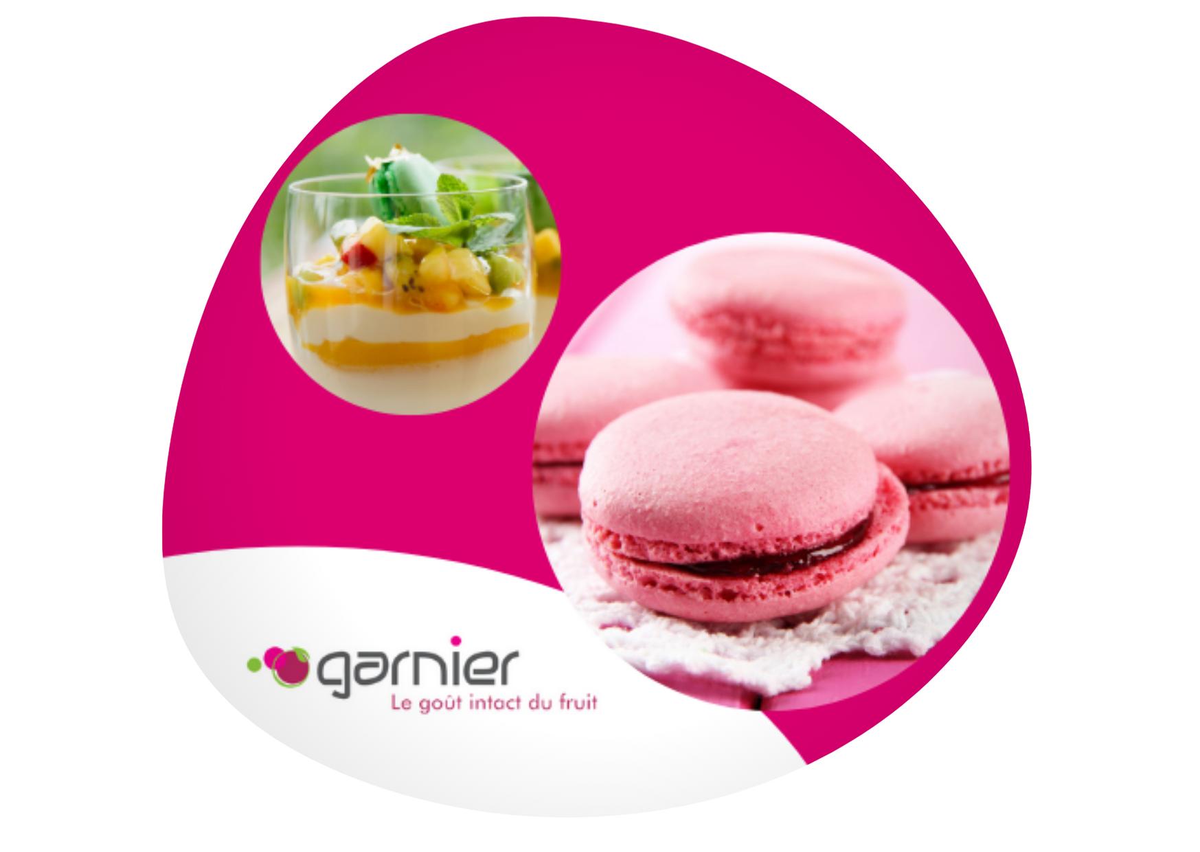Garnier-1